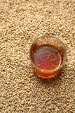 Mout en whisky Royalty-vrije Stock Fotografie