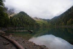Moutain湖一点Ritsa在阿布哈兹 库存照片