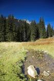 moutain потока Стоковая Фотография RF