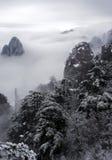 Moutain с туманом и деревом снега Стоковые Фотографии RF