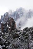 Moutain с туманом и деревом снега Стоковое Изображение