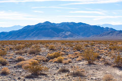 Moutain and bush around Racetrack playa Royalty Free Stock Image
