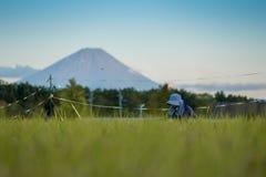 Moutain de Fuji au printemps image libre de droits