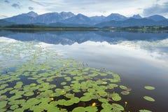 Moutain en el lago Hopfensee, Fussen, Alemania foto de archivo libre de regalías