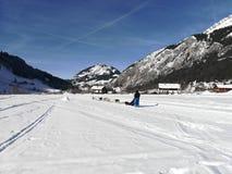 Moutain för himmel för blått för snö för slädehund fotografering för bildbyråer