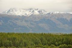 Moutain i patagoniaen Royaltyfri Bild