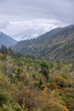 Moutain landscape. In cloudy day at autumn Royalty Free Stock Photography