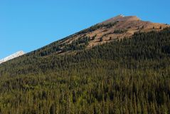 Moutain peaks in Rockies Royalty Free Stock Photography