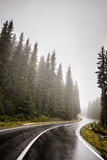 Moutain road. Enjoy driving on mountain roads on a foggy day Royalty Free Stock Photo