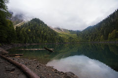 Moutain sjö lilla Ritsa i Abchazien Arkivfoto
