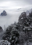 Mountain with snow fog and tree. Yellow moutain of China,with snow, fog and trees Royalty Free Stock Photos