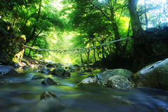 Moutain stream. Image of moutain stream in the summer, Landscape Royalty Free Stock Photography