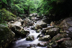 Moutain stream. Image of moutain stream in the summer, Landscape Stock Photo