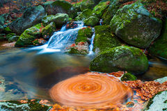 Moutain stream whrilpool from leaves Stock Photo