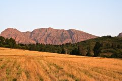 Moutain, trees and field Royalty Free Stock Photo