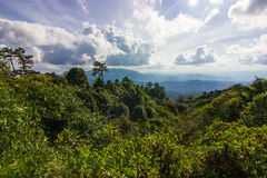 Moutain verde - Chiang Mai, Tailandia immagine stock