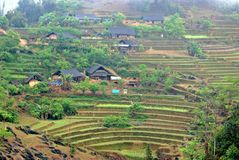 Moutainous village in Sapa Royalty Free Stock Image