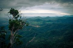 Moutains in Da Lat royalty free stock image