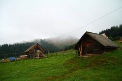 Moutains en el verano, Ucrania Foto de archivo libre de regalías
