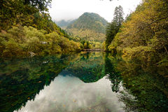 Moutains and Lakes in Jiuzhaigou Valley. Rivers and Lakes in Jiuzhaigou Valley with Cloudy sky.Fog floating around above mountains Royalty Free Stock Images