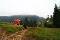 Moutains in summer, Ukraine Stock Photo