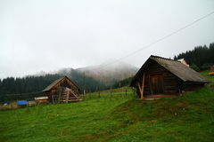Moutains in summer, Ukraine Royalty Free Stock Photo