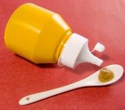 Moutarde Image libre de droits