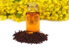 Moutarde avec le pétrole et la fleur photo libre de droits