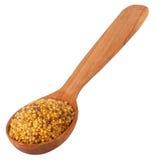 Moutarde sur la cuillère en bois Photo stock