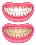 Mouth vector illustration