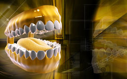 Mouth Royalty Free Stock Image