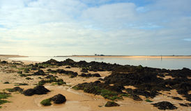 Mouth of Etel river in  brittany Royalty Free Stock Image