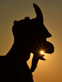 In the mouth of the gargoyle. The setting sun behind a statue of a gargoyle Royalty Free Stock Photo