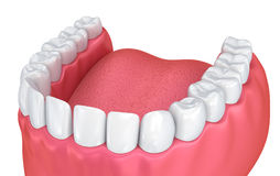 Mouth gum and teeth Royalty Free Stock Photography