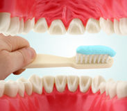 Mouth from inside and tooth-brush. Dental care concept Royalty Free Stock Photo