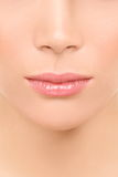 Mouth and nose closeup - beauty face woman Stock Image