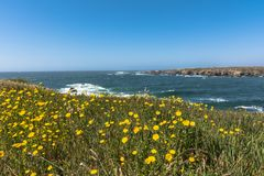 The Mouth of Noyo River, Fort Bragg, California; Stock Photography