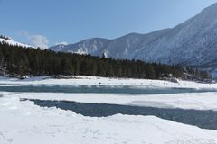 Mouth of the river , Altai, Russia Stock Photography