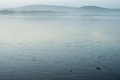 The mouth of the river at low tide Stock Photography