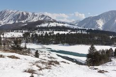 Mouth of  Ursul River , Altai, Russia Royalty Free Stock Photo