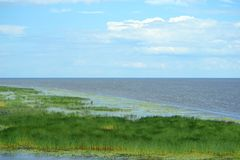 The mouth of the river Volkhov. Novaya Ladoga over the horizon Stock Photography