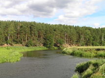 Mouth of the small river. Mouth of Ukhtokhma river at summer day Royalty Free Stock Photography