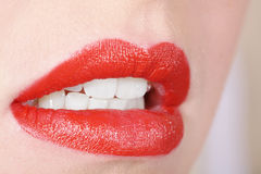 Mouth white tooth Stock Photography