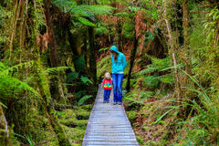 Mouther with little daughter walking in the rain forest. New Zealand Stock Photos