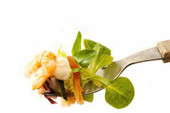 Mouthful of Salad with Prawn and Mayonnaise Stock Photography