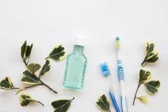 Mouthwash, υγειονομική περίθαλψη οδοντοβουρτσών για τη στοματική κοιλότητα με το φύλλο στοκ φωτογραφία