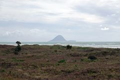 Moutohora或惠尔岛从Ohope海滩在华卡塔尼,新西兰 免版税库存照片