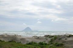 Moutohora o isola della balena dalla spiaggia in Distretto di Whakatane, Nuova Zelanda di Ohope immagine stock