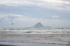Moutohora o isola della balena dalla spiaggia in Distretto di Whakatane, Nuova Zelanda di Ohope immagini stock