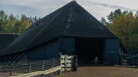 Moutons à une grange photo libre de droits